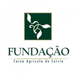 Logo caixa fundação
